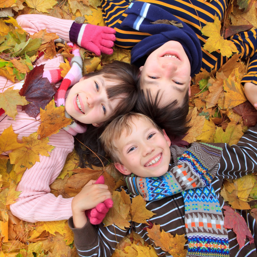 group of children in a pile of leaves